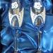 poročni kozarci v darilni embalaži