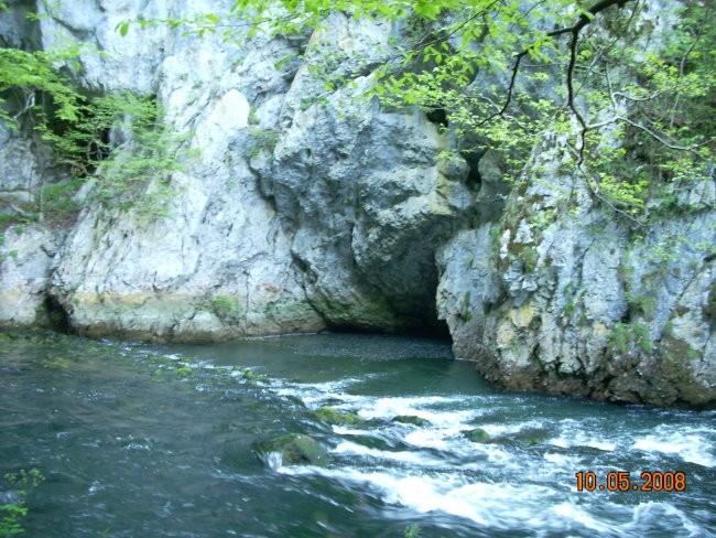 Teren 10.5.2008 (Cerkniško jezero in Planinsk - foto povečava