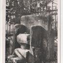 GOSPOSVEDSKO POLJE 1928 - 15€