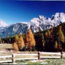 Cortina 2002