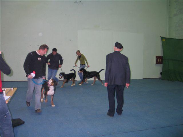 Vrtojba 20.11.2005 - foto