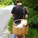 izlet s kolesom