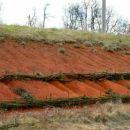 Rdeča prst pri Slovenski vasi in preprečevanje erozije