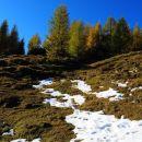 snega za vzorec