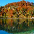 odsev v jezeru Alpensee