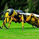 velikanske žuželke :-)