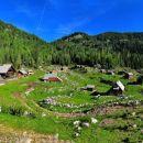 Dedno polje