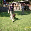 Izpiti šolanih psov, 24.06.2012 (galerija 2)