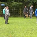 Turnir šolanih psov