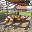 Dežela kozolcev, Šentrupert