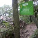 Ker sta šli planinki s kužkom bolj počas, jih kmal prehitim...