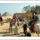 12. egipt - safari s kamelami