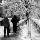 snow is everywhere (2)