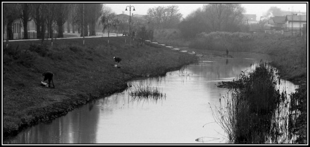 Fishing on the river (3)