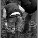 checking of fish