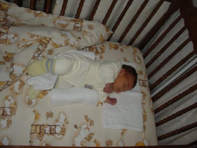 Domača posteljica