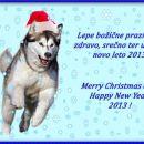 Vesele božične praznik in srečno 2013