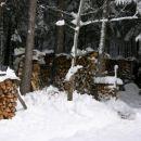 Pravi pohorc ima drva za dve leti naprej