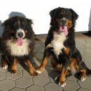 Melly & Ruby, februar 2008