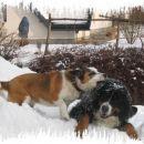 Melly in Ika: igranje na snegu