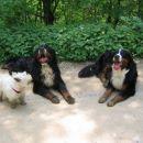 Snoopy, Lucky & Reny
