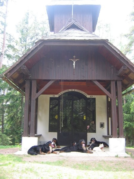6 berncev pred cerkvico na Brinjevi gori