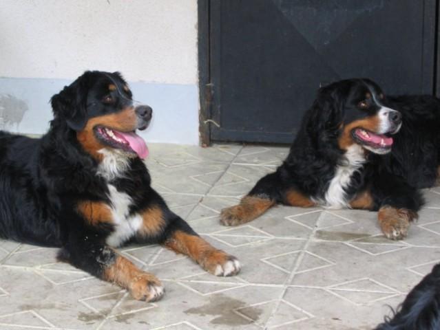 Rina in Lenny