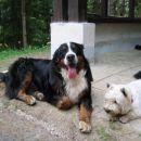 Reny & Snoopy