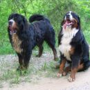 Lucky & Reny
