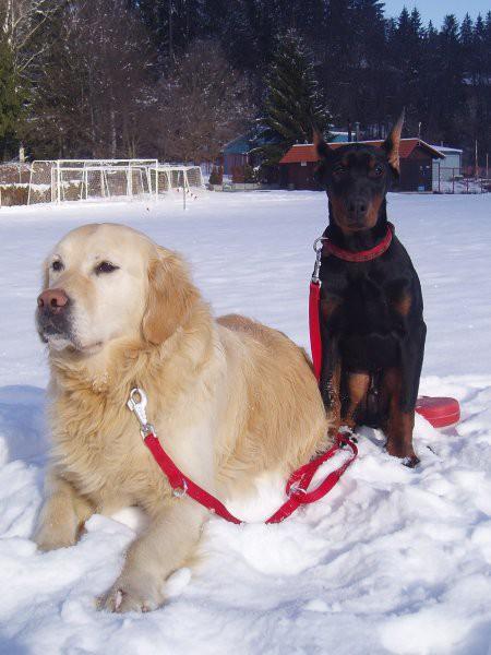 Iron in Pal v snegu - foto
