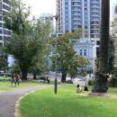 Albert park -->
