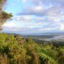 Pogled na Whangarei s Parahakija