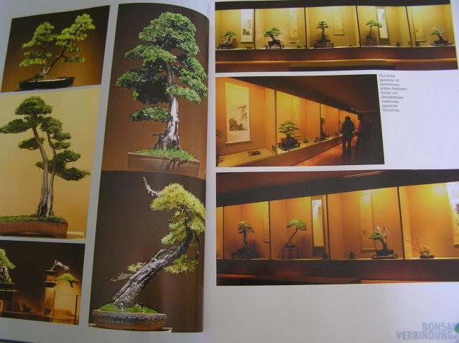 Slike iz revije - foto povečava