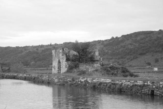 V Sečoveljskih solinah ... (2005) - foto