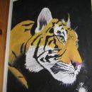 moje omare so poslikane s tigri