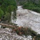 Tu je bil preje gozd
