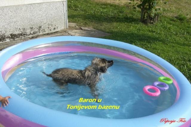 Baron-Silni-Cetiri mjeseca - foto