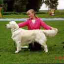 Retriever Speciality Show Slovenia 2005: Best Junior in class, BIS Junior