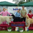 Cacib Varazdin 2006: Junior Handling 2nd place