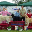 Cacib Varazdin 2006: Junior Handling 2nd place