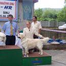 Cac Split 2006: BOG 3rd