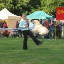 Cacib Maribor 2006: Dogdancing