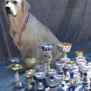 2005: Aaron with some of his cups