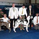 Cacib Portoroz 2006-Res. Best of Day