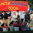 Cacib Maribor 2006: Best Junior Handler