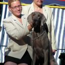 Cacib Maribor 2006: Allegro&me