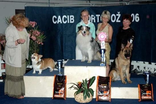 Cacib Portoroz 2006: Rock winning Best of Group
