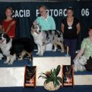 Cacib Portoroz 2006: 1st place in Junior handling