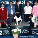 Cacib Portoroz 2005: 3rd place in Junior Handling