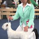 Cacib Vrtojba 2006: Miska winning CAC, CACIB at her first show!